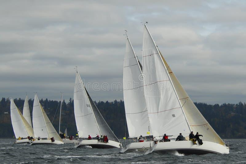 Voilier emballant sur Puget Sound, Seattle, Washington State photographie stock