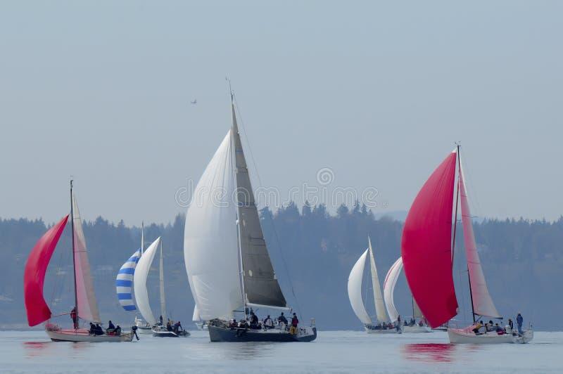 Voilier emballant sur Puget Sound, Seattle, Washington State photographie stock libre de droits