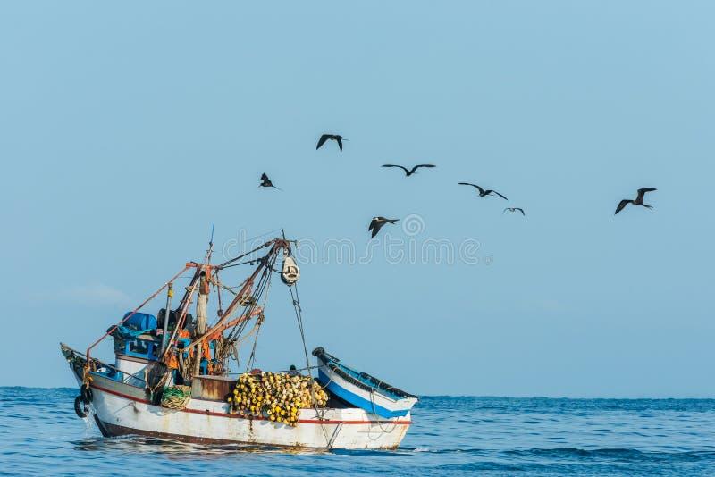 Volée des oiseaux et du bateau de pêche dans la côte péruvienne chez Piura P image stock