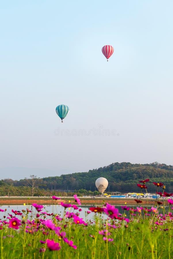 Vol chaud de ballons à air au-dessus de lac images libres de droits