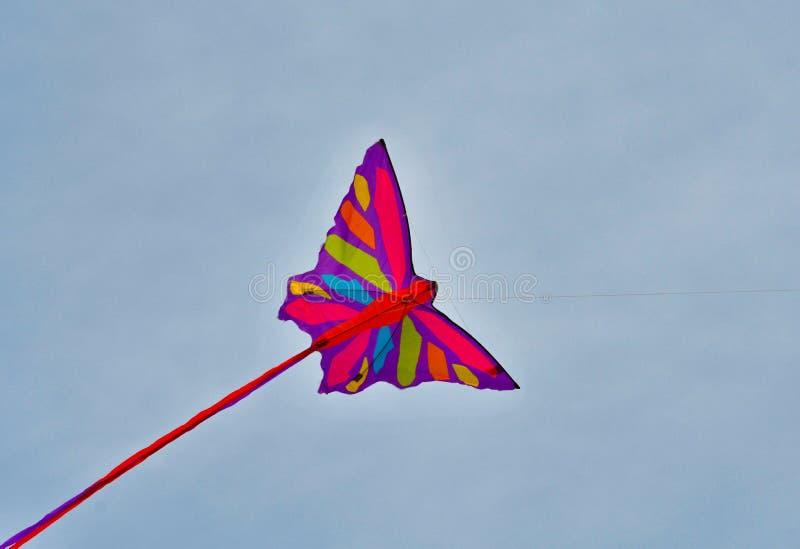 Vol coloré de cerf-volant en ciel photographie stock libre de droits