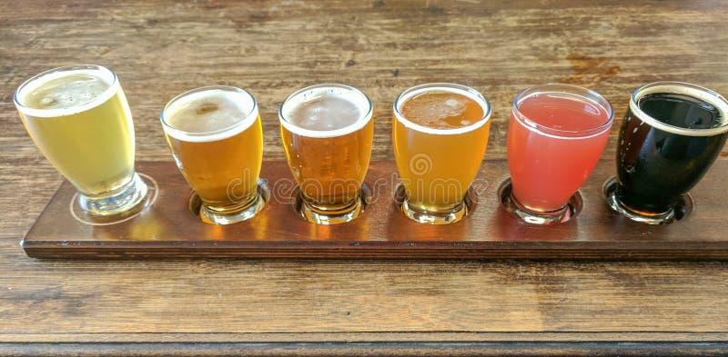 Vol d'échantillon de bière de métier image libre de droits