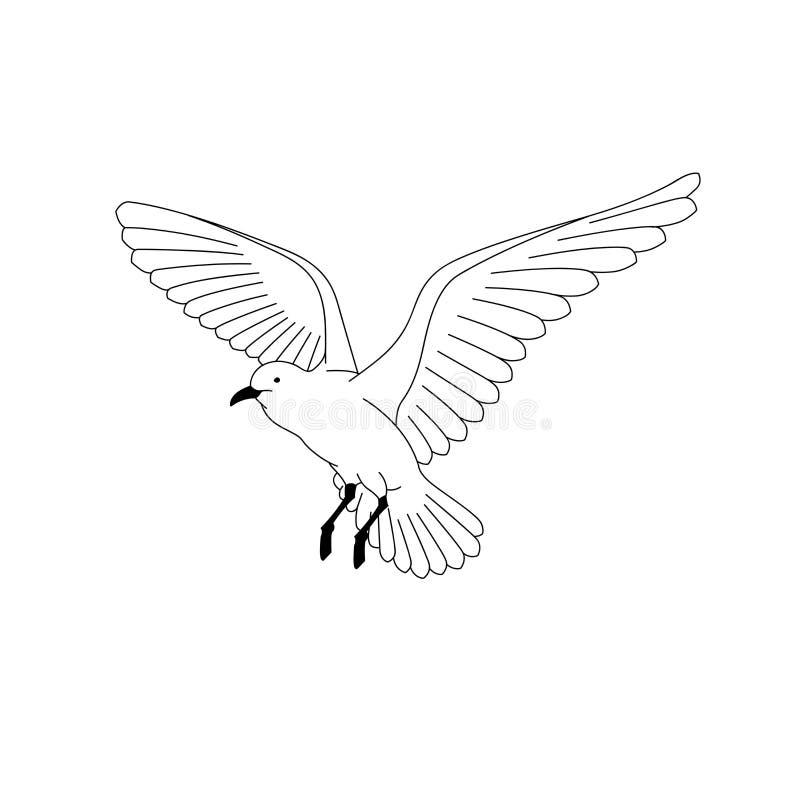 Vol d'oiseau vecteur d'illustration schéma dessin de main d'animal ligne d'isolement par oiseau sur le fond blanc symbole de la l image libre de droits