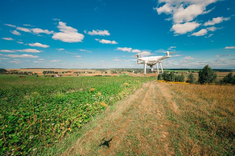 Vol de bourdon de Quadcopter photographie stock