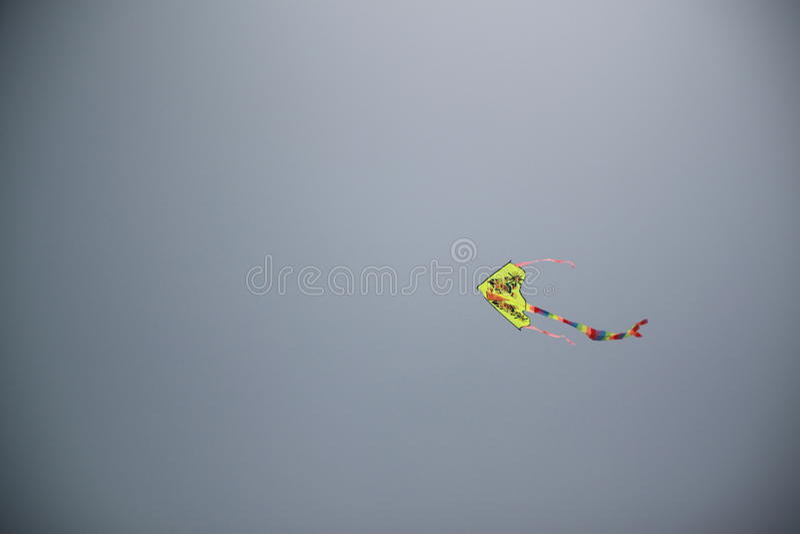 Vol de cerf-volant images stock