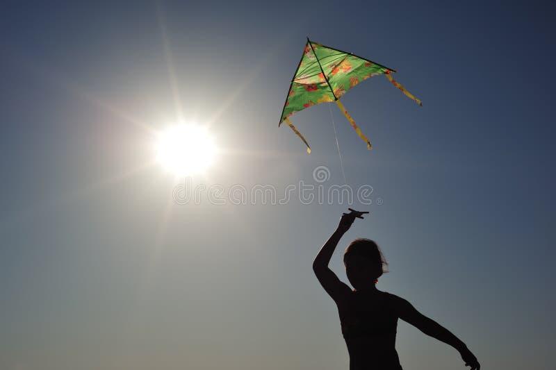 Vol de cerf-volant photo stock