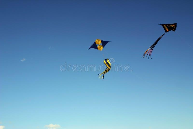 Vol de cerf-volant image libre de droits