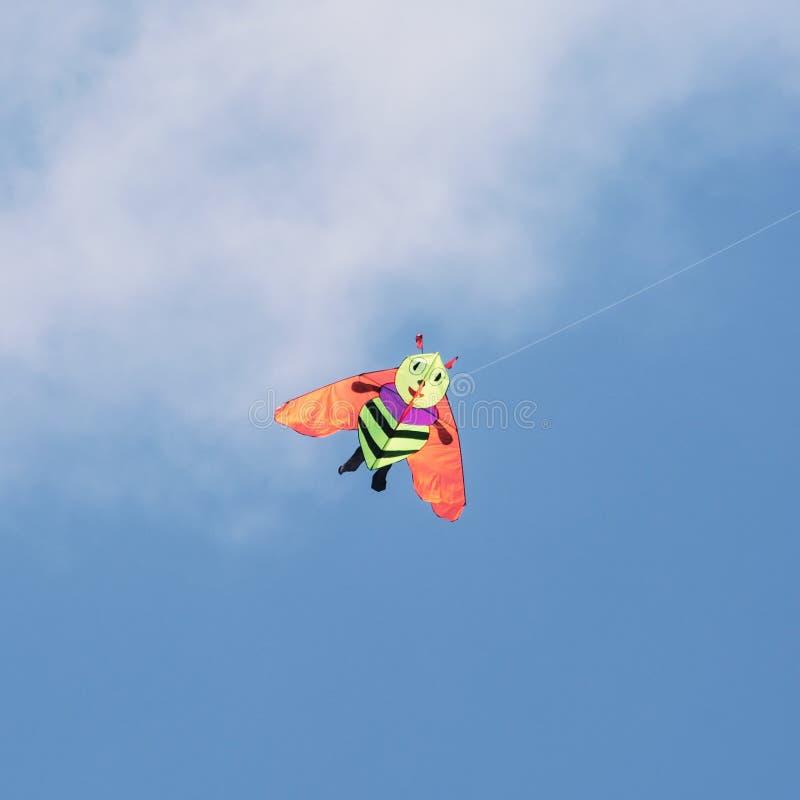 Vol de cerf-volant - abeille image stock