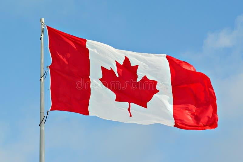 Vol de drapeau de Canada sur le poteau images stock