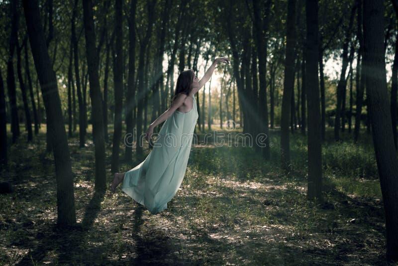 Vol de femme dans les bois images stock