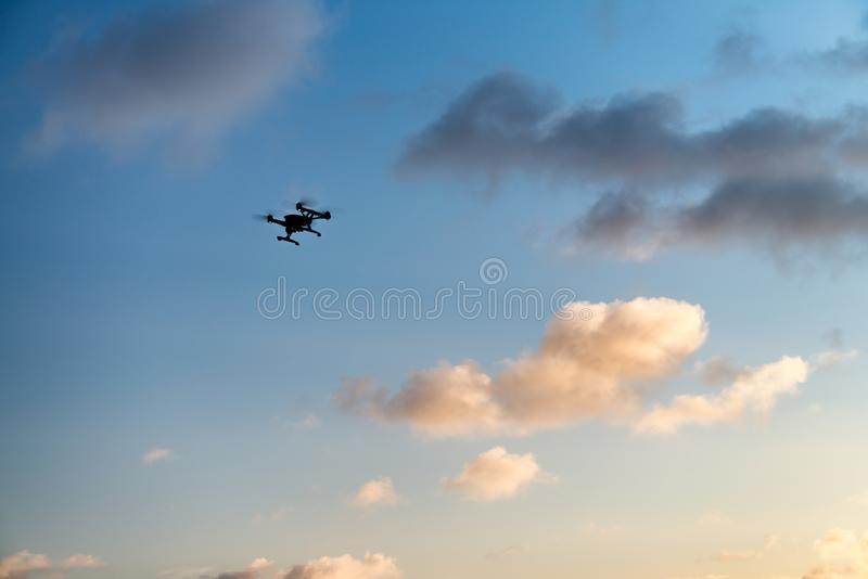 Vol de silhouette de bourdon contre le ciel de coucher du soleil concept de course photo libre de droits