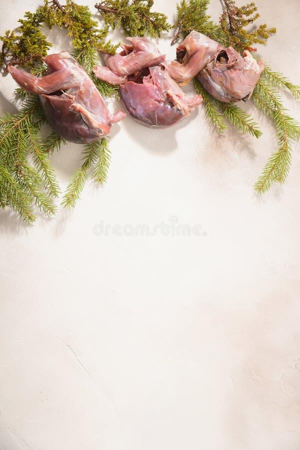 Volailles sauvages de chasse dans la cuisson E image libre de droits