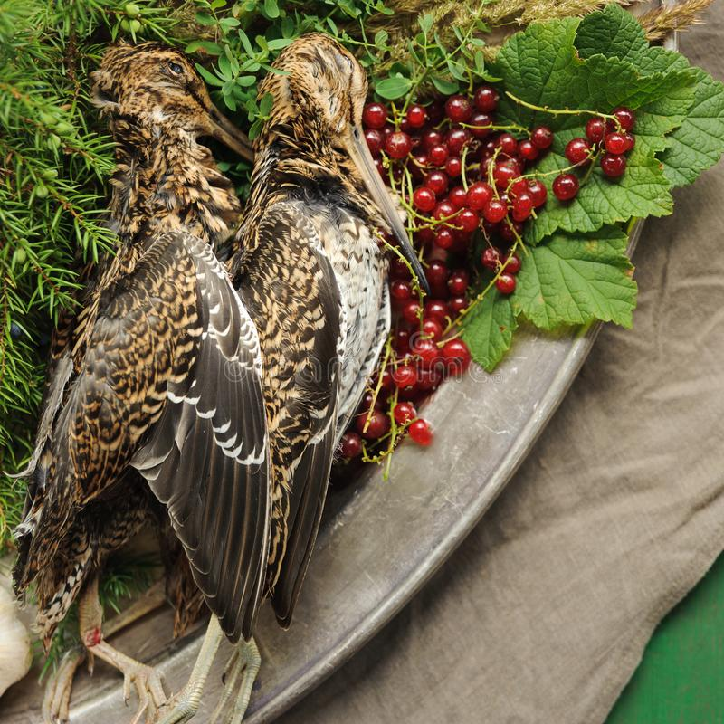 Volailles sauvages de chasse dans la cuisson Mensonge du coup de feu deux ou de la bécasse des bois sur le plat en métal Chasse d images stock