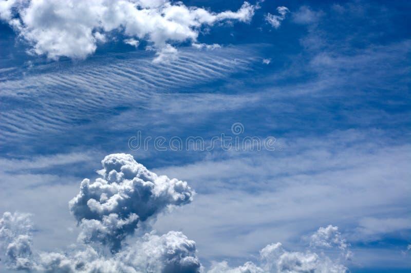 Volando nel cielo blu nelle nuvole immagine stock