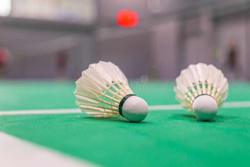 volant de badminton de plan rapproché sur la cour verte photographie stock