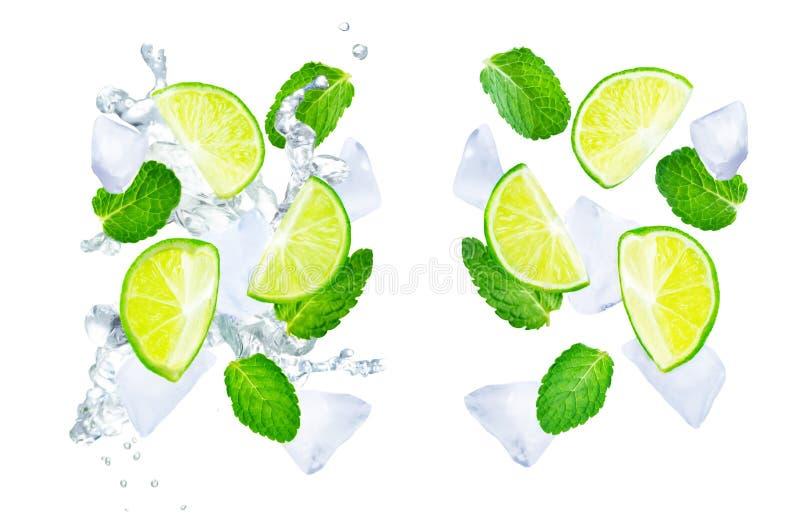 Volar las cales con hiela y las hojas de menta en un fondo blanco stock de ilustración