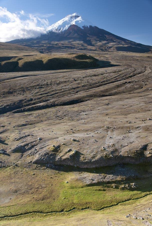 Volcán de Cotopaxi en Ecuador fotografía de archivo