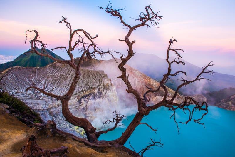 Volcán de Kawah Ijen con los árboles durante salida del sol hermosa en Java Oriental, Indonesia imagen de archivo libre de regalías
