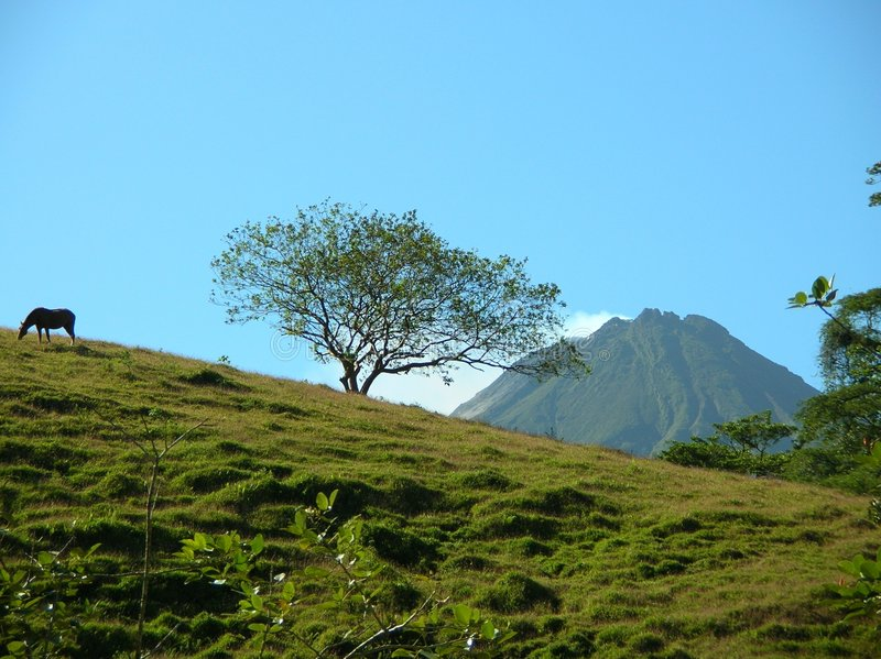 Volcán y caballo fotografía de archivo libre de regalías