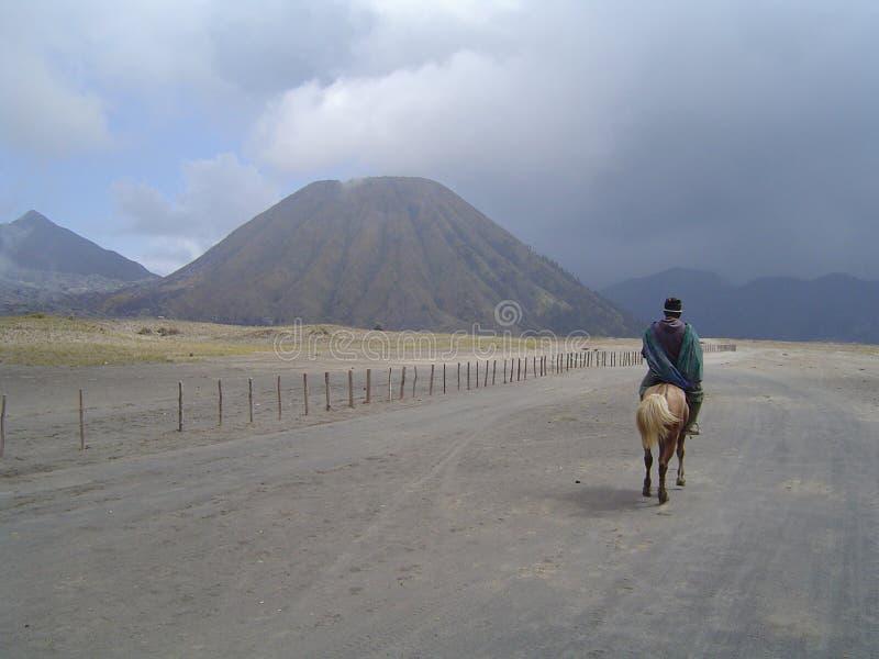 Volcán y caballo de Bromo foto de archivo