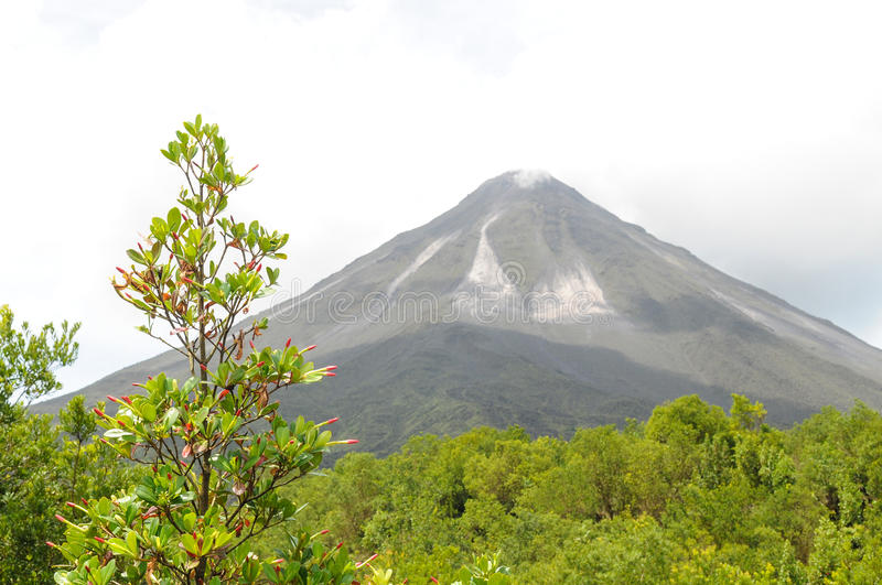Volcan d'Arenal, Costa Rica image stock