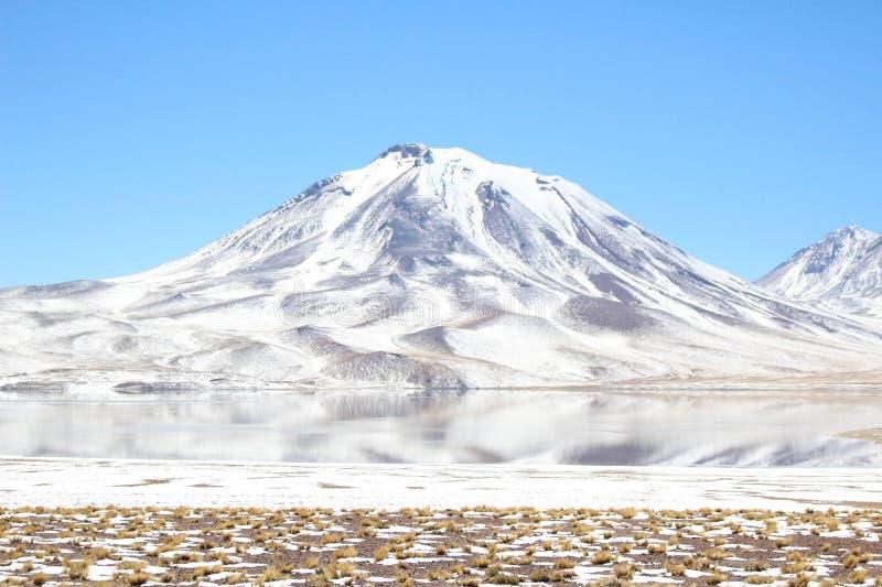Volcan de Lascar photo stock