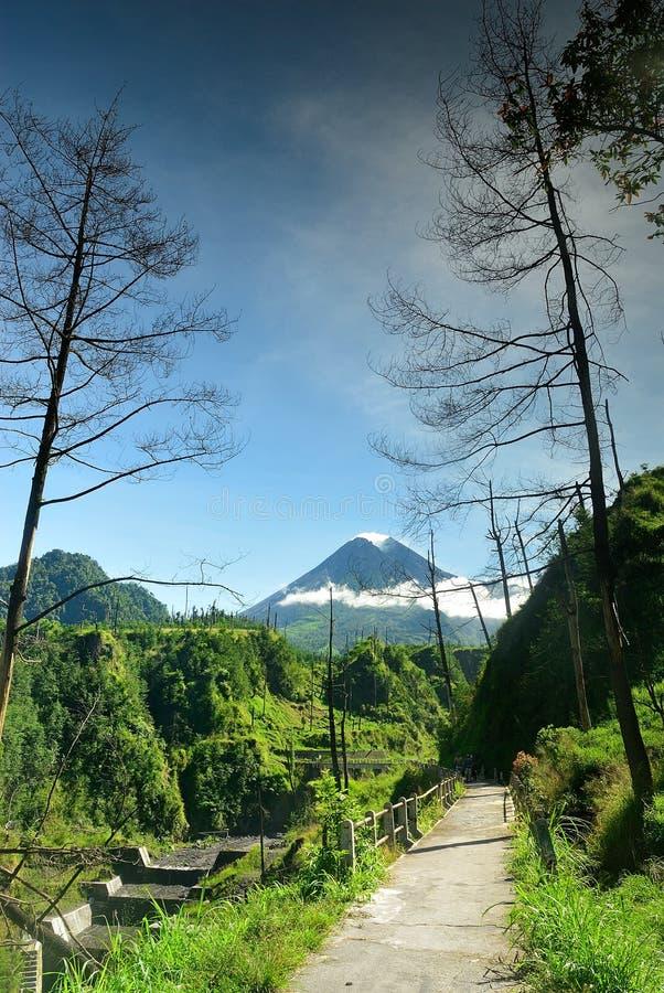 Volcan de Merapi photo libre de droits