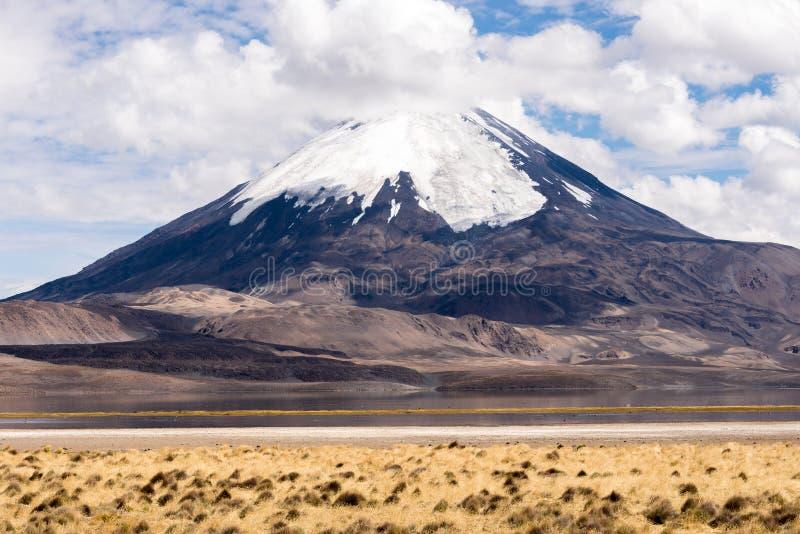 Volcan de Parinacota et lac Chungara (Chili) image libre de droits