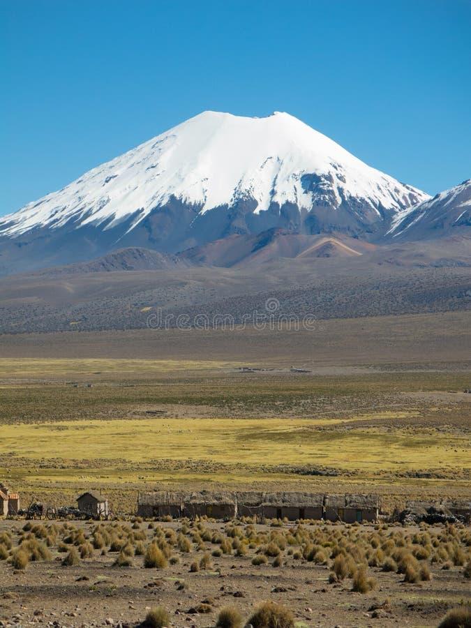 Volcan de Parinacota Paysage andin élevé dans les Andes photographie stock libre de droits