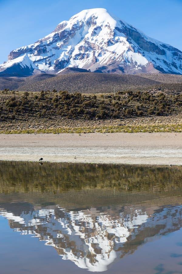 Volcan et lac Huaynacota Sajama La Bolivie andine image libre de droits
