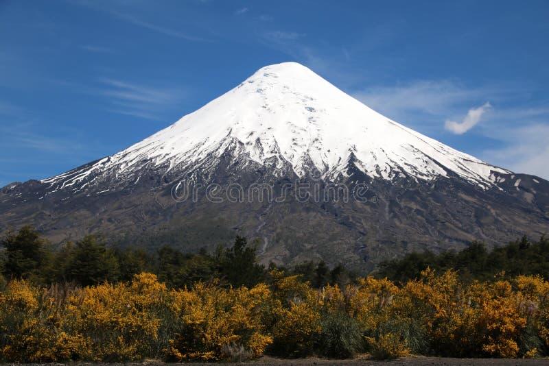 Volcan Osorno, o Chile imagem de stock