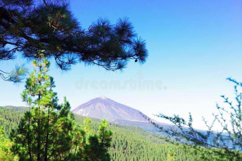 Volcan Teide, isla de Tenerife imágenes de archivo libres de regalías
