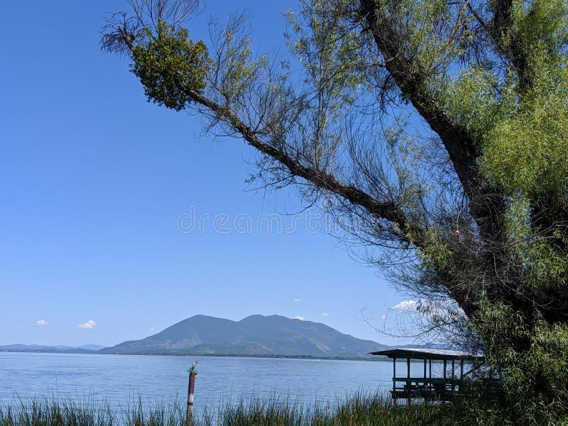 volcan Vue de bord de la route à travers le lac D'arbre étrange dans le premier plan photographie stock libre de droits