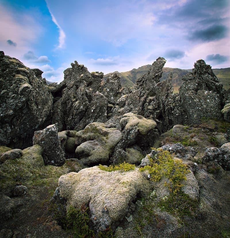 Basalt Rock Gardening : Volcanic basalt lava landscape iceland stock photos