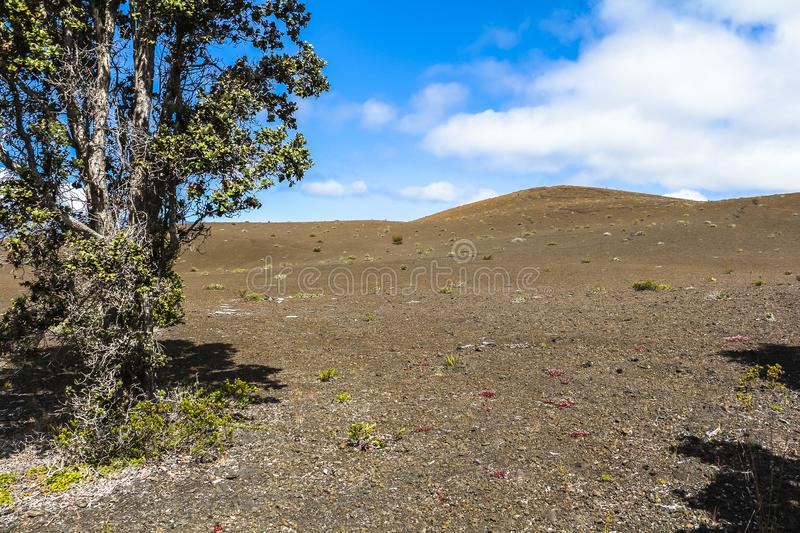 Volcanic landscape inside volcano national park, Hawaii royalty free stock images