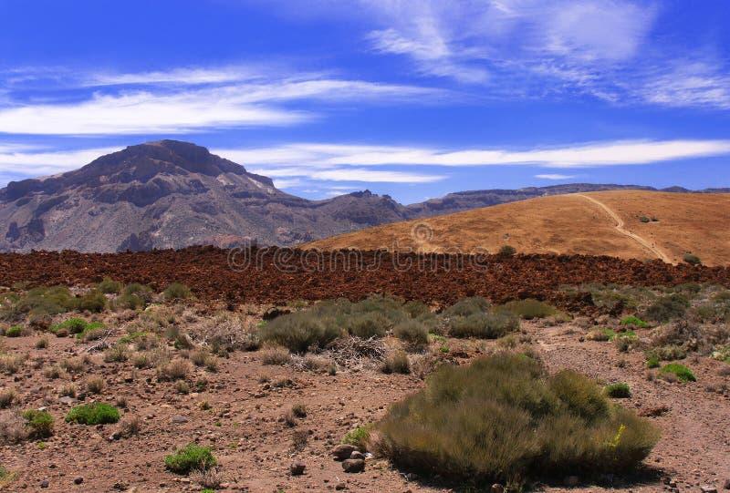 Volcanic  landscape  near volcano Teide with blue