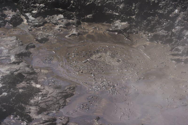 Volcanic mud. New Zealand. Volcanic boiling mud. New Zealand near Rotorua royalty free stock photography