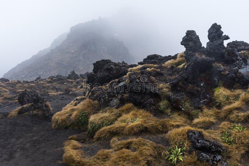 Volcanic rocks formation at Tongariro national park stock photos