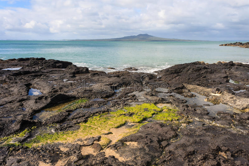 Volcanic rocks on North Shore coast. In New Zealand stock images