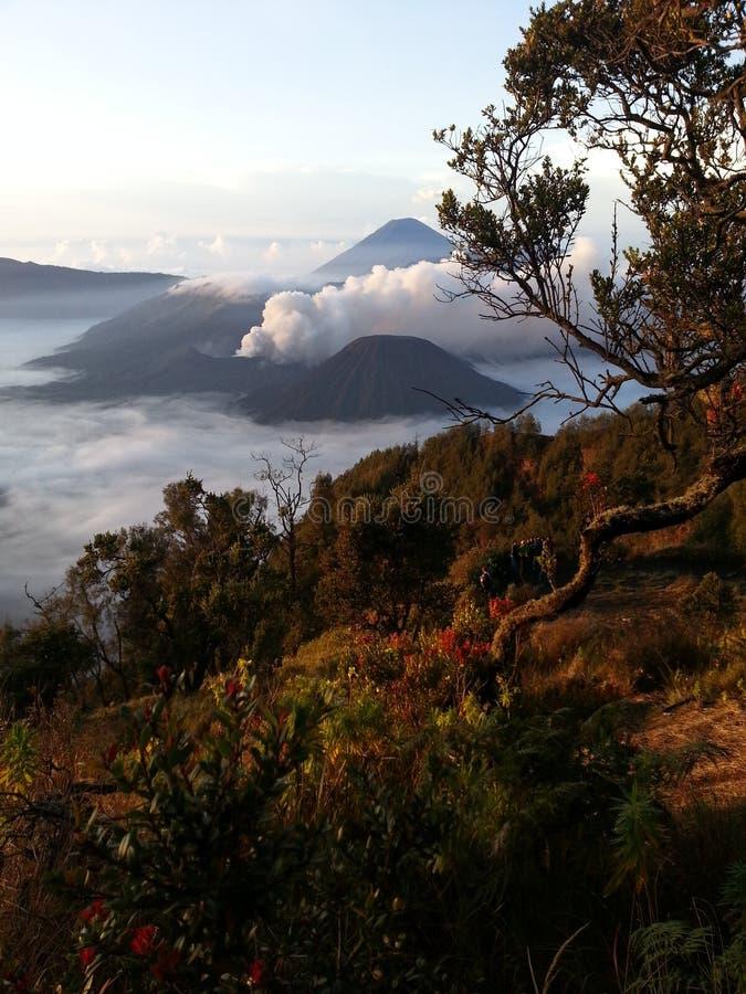 Volcano Bromo stock photo