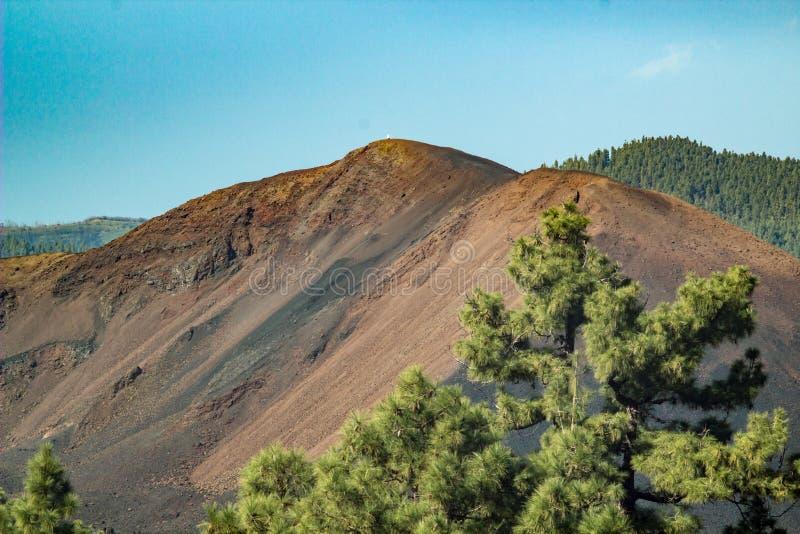 Volcano Chinyero - som skapas av det sista utbrottet p? Tenerife i 1909 Kanarief?gel?ar Spanien fotografering för bildbyråer