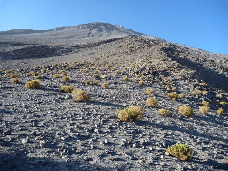 Volcano El Misti ovanför arwquipa royaltyfri fotografi