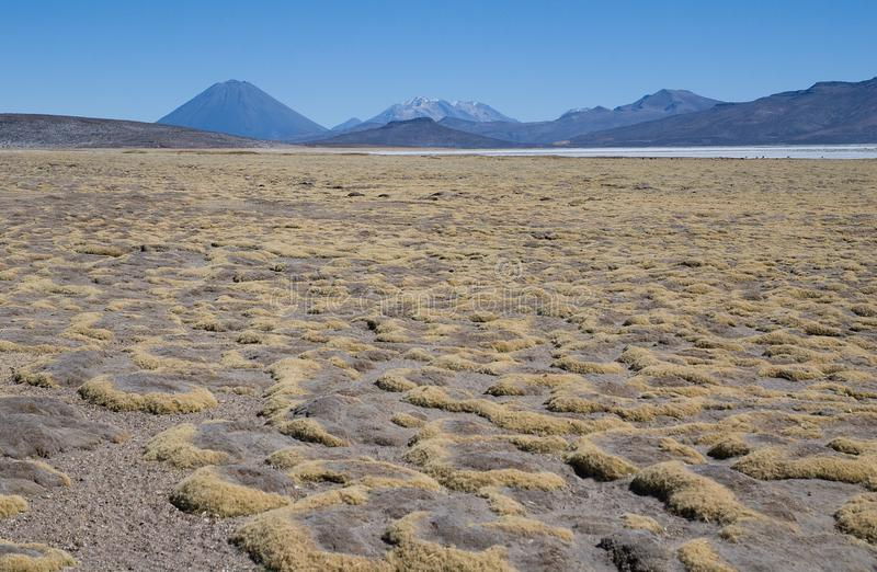 Download Volcano El Misti And Volcano Nevado Chachani Stock Image - Image: 27393369