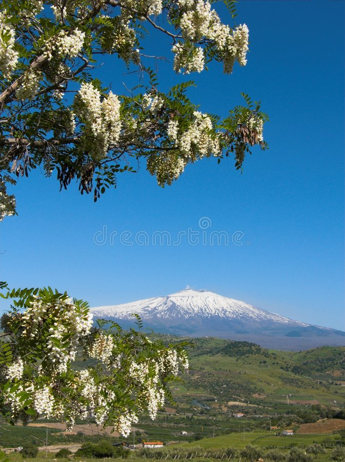 The volcano Etna landscape. In Sicily royalty free stock images