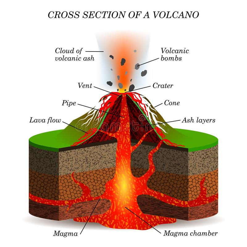 Volcano igneous eruption in the cross section. Education scientific scheme royalty free illustration