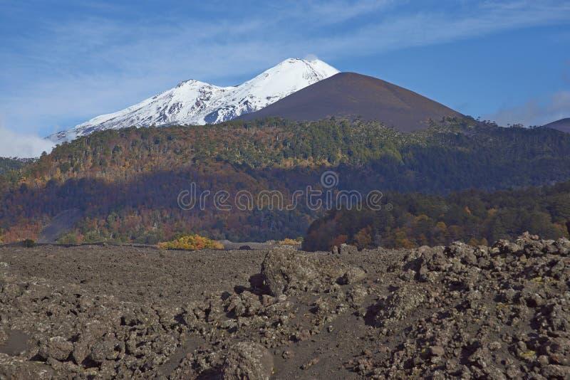 Volcano Llaima i den Conguillio nationalparken, Chile royaltyfri bild