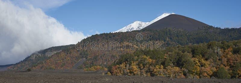 Volcano Llaima nel parco nazionale di Conguillio, Cile del sud fotografie stock libere da diritti