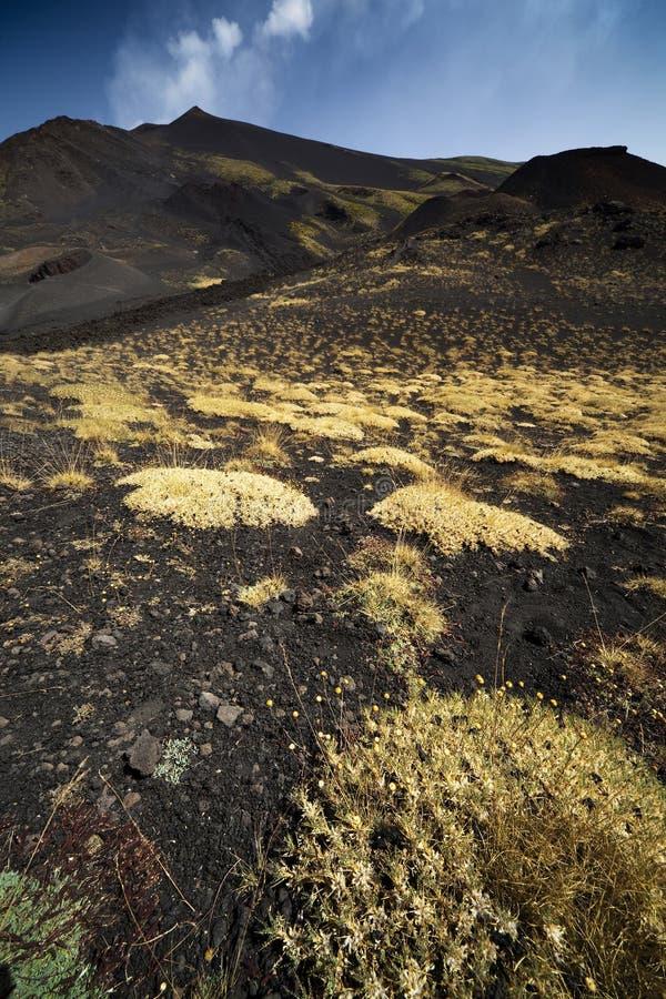 Volcano Mount Etna Royalty Free Stock Photos
