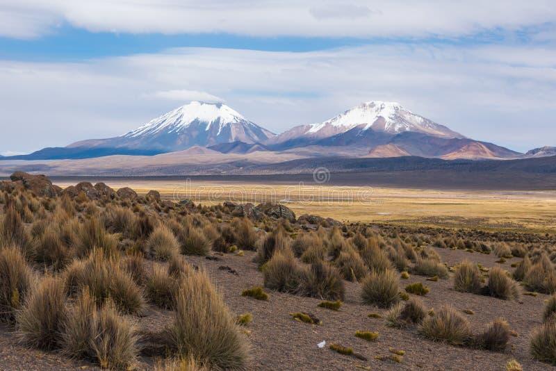 Volcano Nevado Sajama royaltyfria bilder