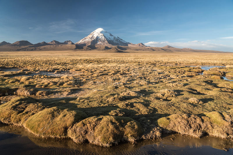 Download Volcano Nevado Sajama photo stock. Image du bolivia, lointain - 87707872